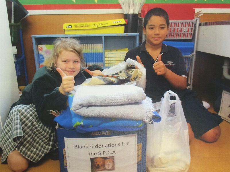 Students at Ardmore School collecting blankets for SPCA animals