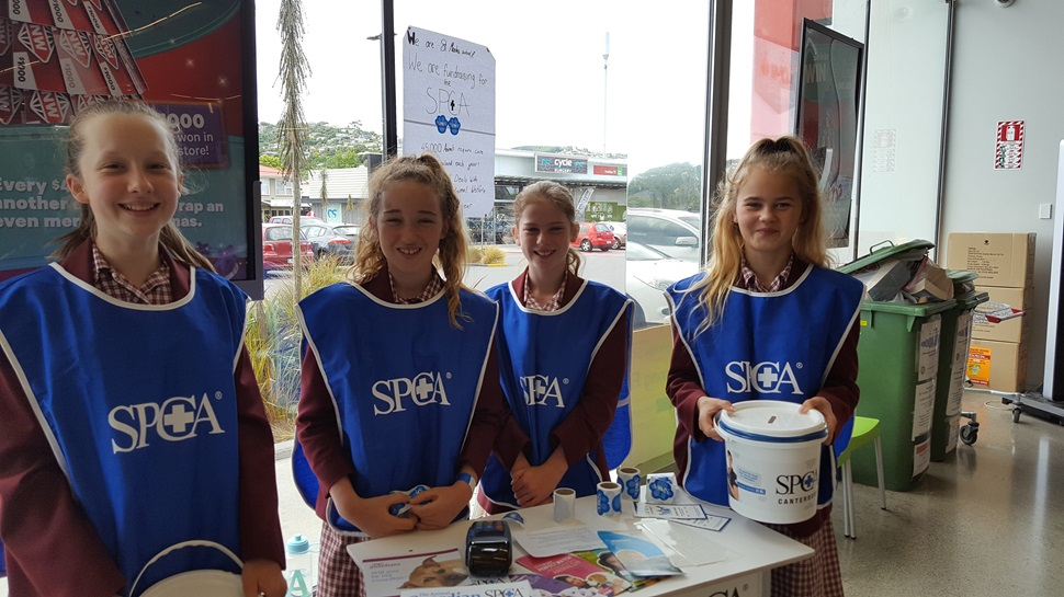Students from Saint Mark's helping out at SPCA's Annual Appeal