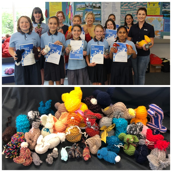 Thank you to the students at Waikowhai Intermediate for holding a donation drive and knitting these adorable mice and bunnies for SPCA animals!