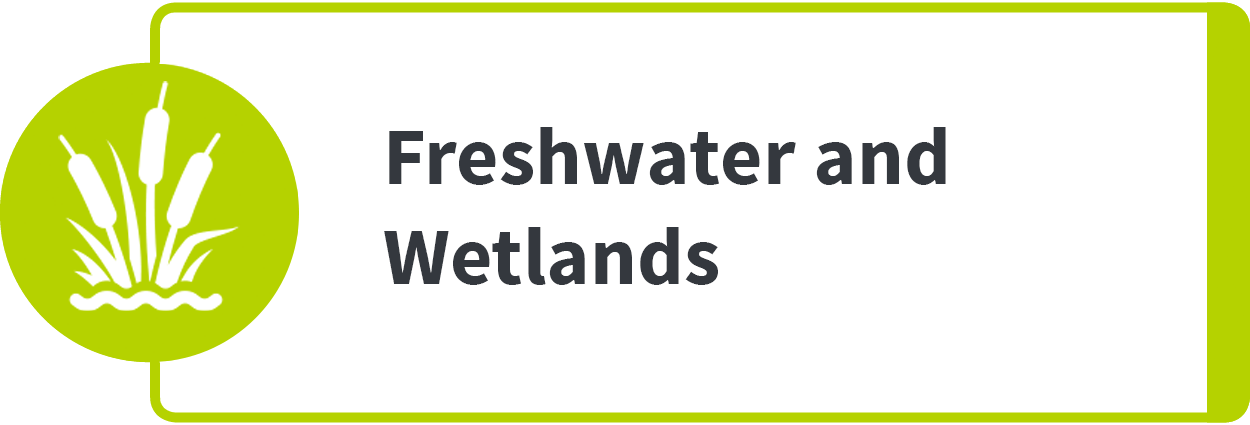 Freshwater and Wetlands
