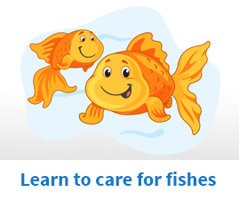 Learn to care for fishes